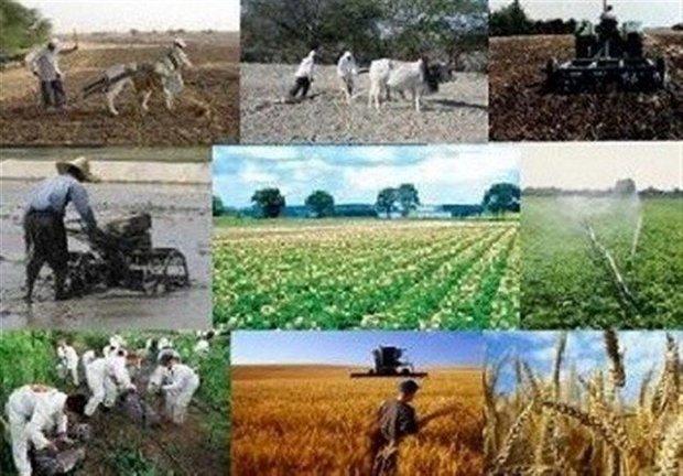 پرداخت تسهیلات ارزان قیمت به متقاضیان توسعه کشاورزی