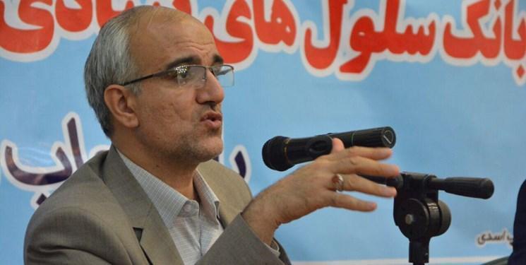 ایران به دنبال صادرات محصولات سلولی