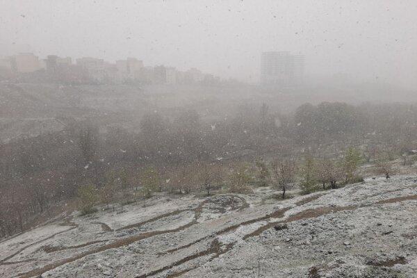 مدیریت بحران: تهران تا 15 درجه سردتر می شود ، هواشناسی: تا 5 درجه گرمتر می شود