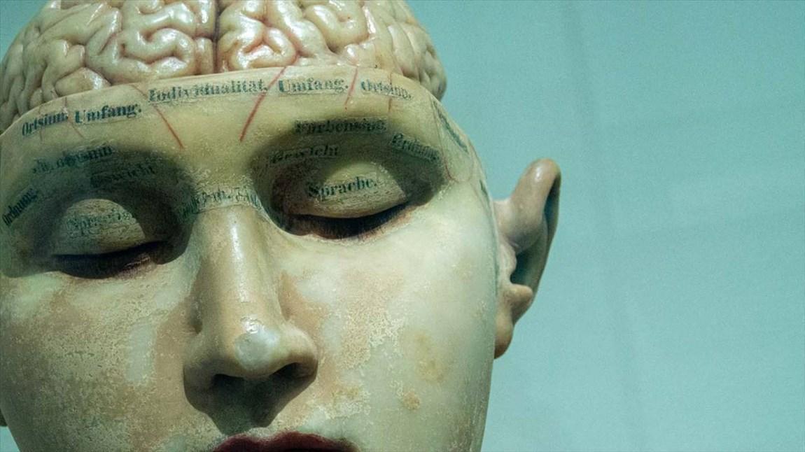 تنهایی مفهوم دوستی را در مغز انسان تغییر می دهد