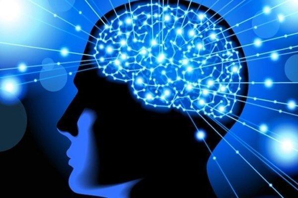 بانک اطلاعات آزمون های ارزیابی شناختی ایجاد شد